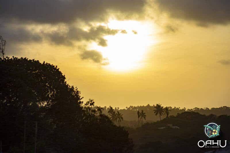 7 bons motivos para conhecer o Oahu Alto de Imbassaí 4 7 bons motivos para conhecer o Oahu Alto de Imbassaí